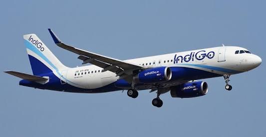 IndiGo Bids to Buy Air India