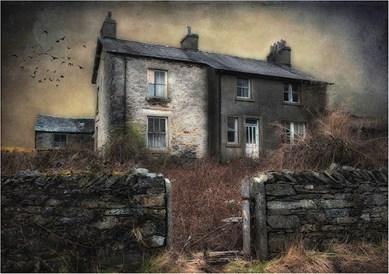 Brooding - Barbara Hawthorne