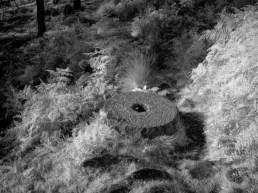 Millstones 3