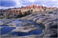 Potholes in Slickrock Canyonlands NP