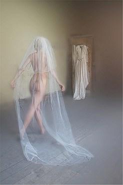 Veiled - Judith Parry