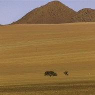 Commended-Namib Rand-Peter Herreaman