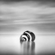 fiap ribbon the shell christine woolgar-england