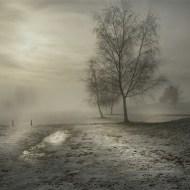 Commended-Misty Morning-Mick Jennings