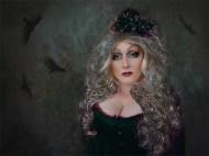 20 - Dolly Birds - P Siviter