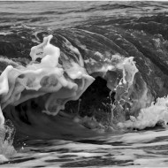 Highly Commended-Wave-Cheryl Leyser
