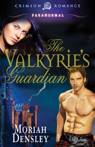 Review: The Valkyrie's Guardian by Moriah Densley