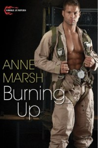 Anne Marsh Giveaway!