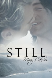 REVIEW: Still by Mary Calmes