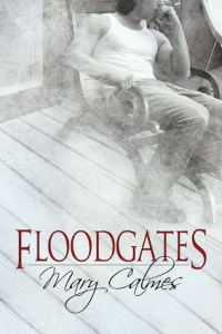 Review: Floodgates by Mary Calmes