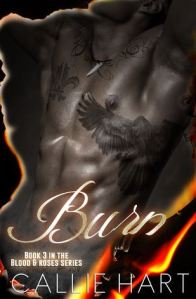 Review: Burn by Callie Hart