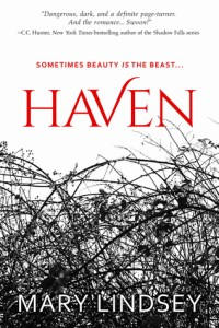 Review: Haven by Mary Lindsey