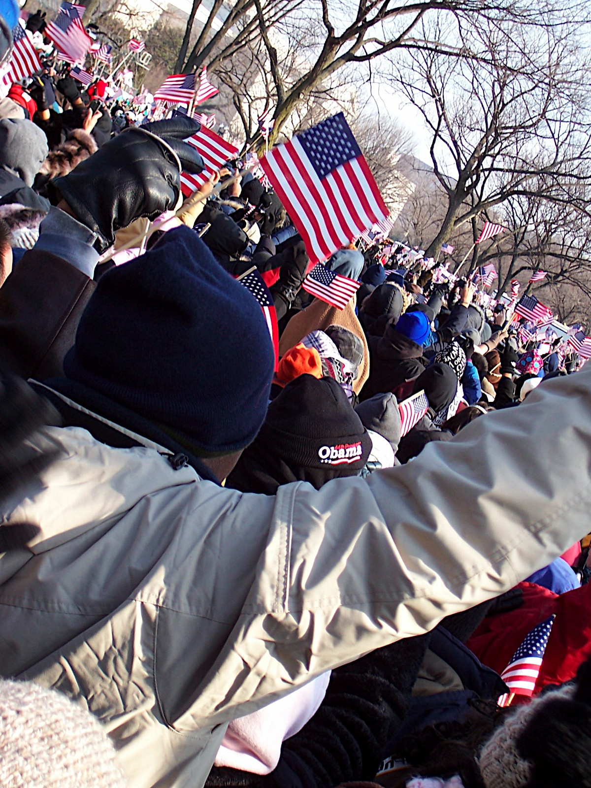 ... and flag-waving, patriotic joy erupts along the Mall.