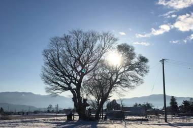安曇野の朝 雪あがり
