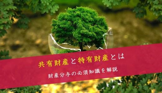 共有財産と特有財産とは-財産分与の法律知識