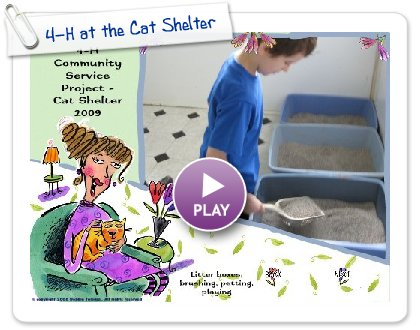 Click to play this Smilebox slideshow: 4-H at the Cat Shelter
