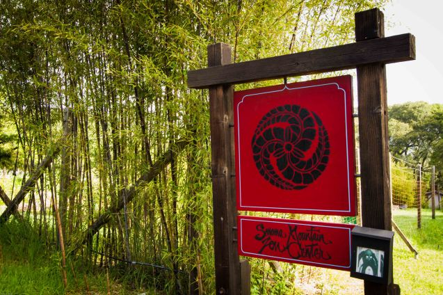 sign & bamboo