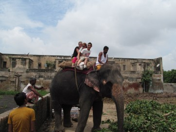 Ahmadabad Elephant Ride