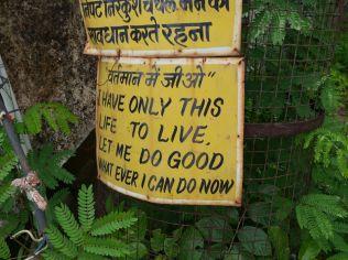 Udaipur India Quote Life Good