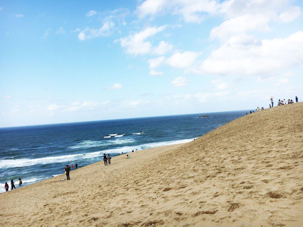 砂丘から見た海