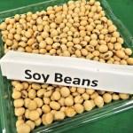 節分豆も自分で作れば安全で安心!どうやって作るの?