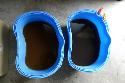赤芽柏の染料液