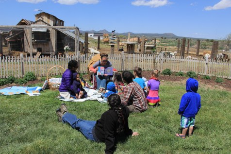 6347 red acre sd16 story time