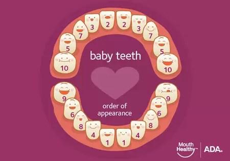 article_baby_teeth.jpg