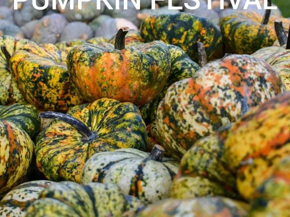 Pumpkin Festival – Celebrating Autumn in Stuttgart Area