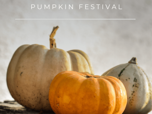 Celebrating Autumn at the Pumpkin Festival in Ludwigsburg