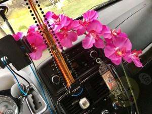 Smiley Ridesharing: Positivity and Orchid