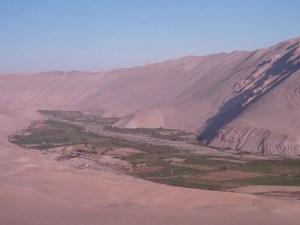 La vallée d'Azapa, une coulée verte en plein cœur du désert