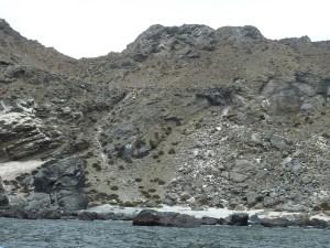 Sur la gauche, le chemin tracé par les pingouins pour monter sur la falaise