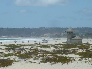 La plage face à l'Hotel del Coronado