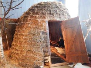 Hutte traditionnelle