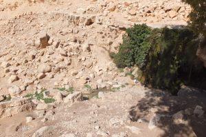 Source de Moïse