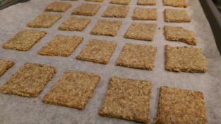 Cheddar oatcakes after baking