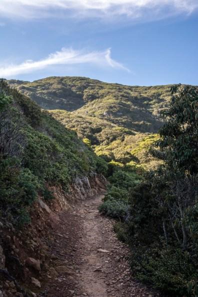 Montara Mountain - San Mateo County   Smiling in Sonoma