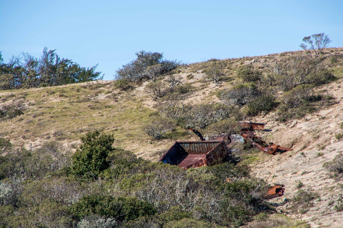 Montara Mountain - San Mateo County | Smiling in Sonoma