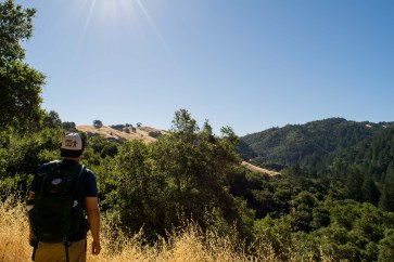 Grandmother Tree - Hood Mountain | Smiling in Sonoma