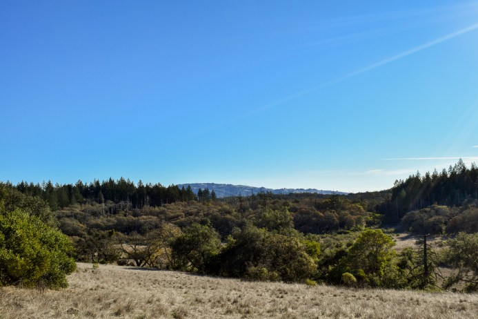 Two Quarry Annadel | Smiling in Sonoma