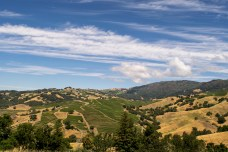 Life in Wine Country | Smiling in Sonoma