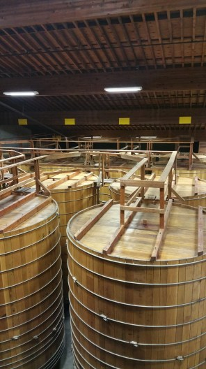 Rodney Strong Gigantic Wine Barrels (tanks)