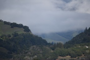 Stonestreet Winery View of the Mayacamas
