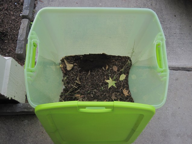 Making our own compost - going to pick up some worm friends at the nursery today!