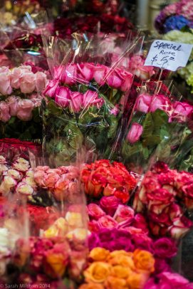 $5 Roses