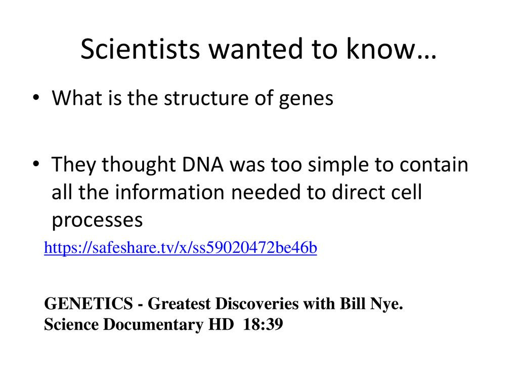30 Bill Nye Genes Worksheet