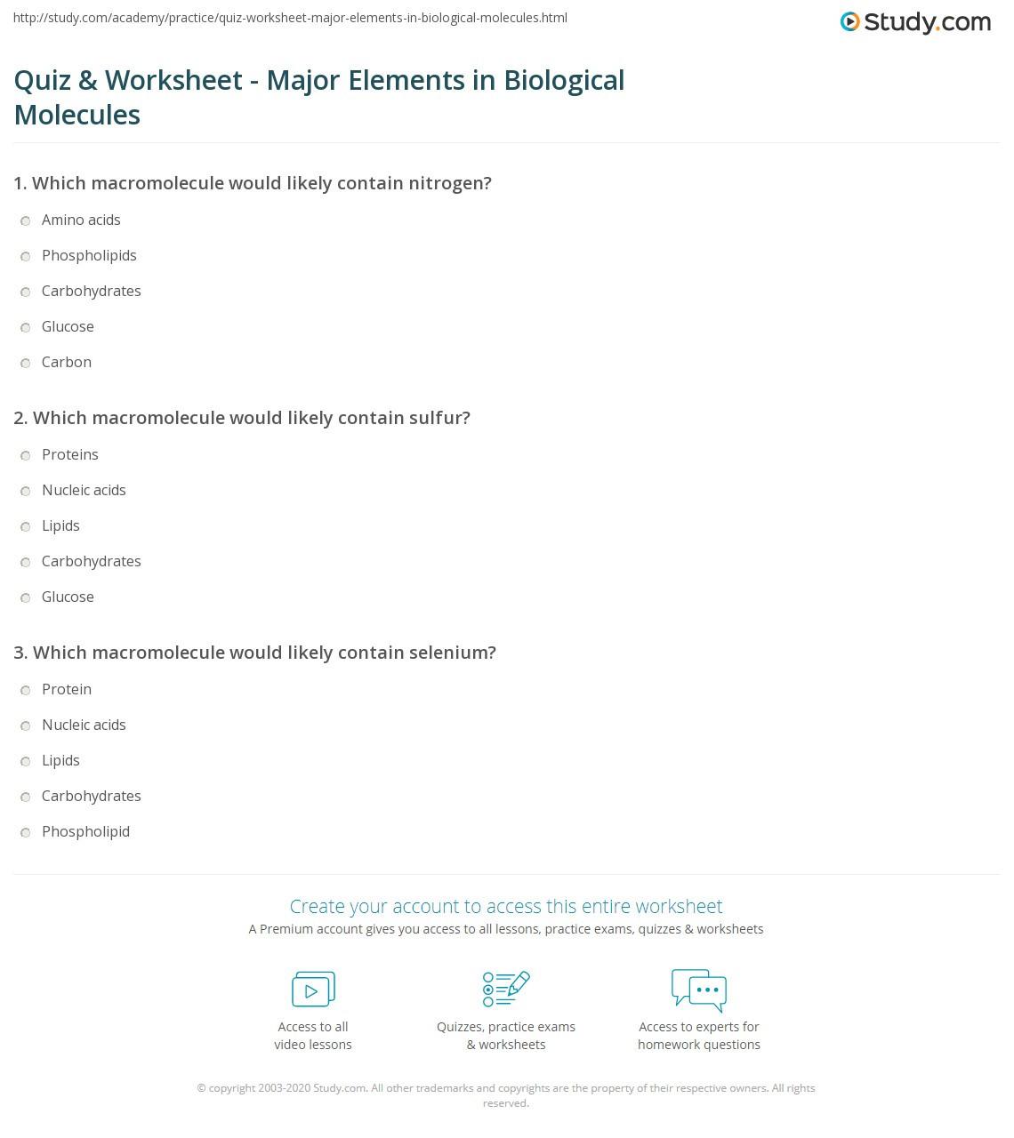 30 Building Macromolecules Worksheet Answers