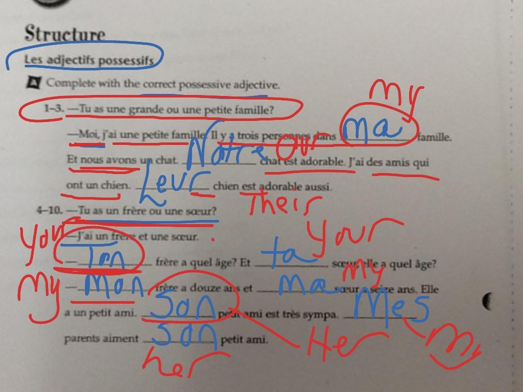 30 Possessive Adjective Spanish Worksheet