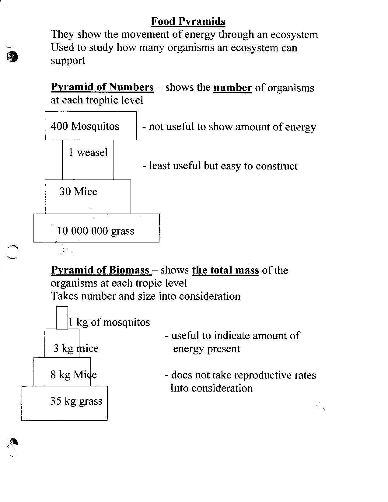 30 Bill Nye Atoms Worksheet